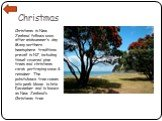 Christmas. Christmas in New Zealand follows soon after midsummer's day. Many northern hemisphere traditions prevail in NZ, including tinsel-covered pine trees and christmas cards portraying snow & reindeer. The pohutukawa tree comes into peak-bloom in late December and is known as New Zealand's