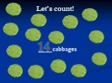 ____cabbages 14