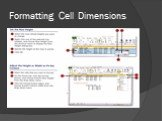 Formatting Cell Dimensions