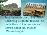 Rano Raraku is one of the most interesting places for tourists. At the bottom of the volcano are located about 300 moai of different heights.